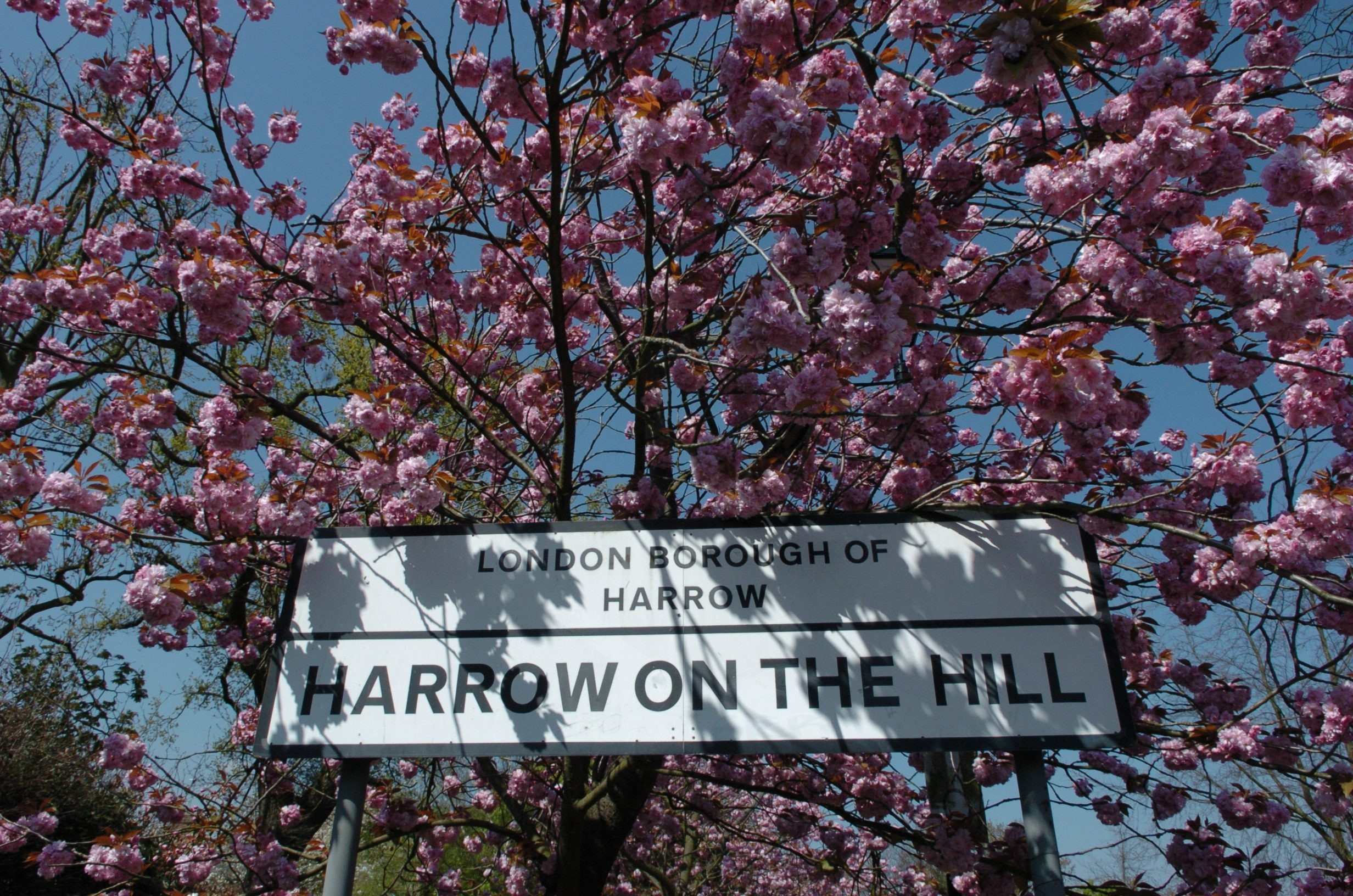Today's jobs in Harrow on the Hill. Leverage your professional network, and get hired. New Harrow on the Hill jobs added daily.