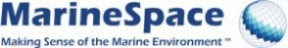 Marine Space Making Sense of the Marine Environment